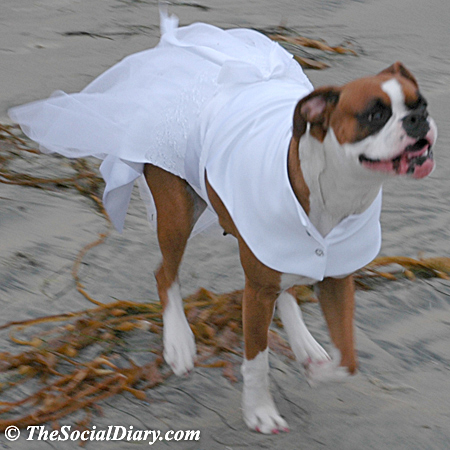 kima running in bridal gown